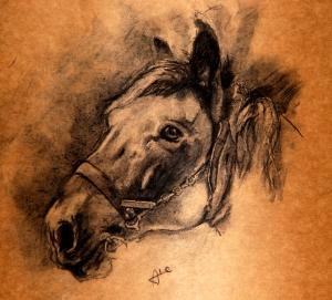 Charcoal_Horse_by_alegreghi